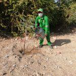Continúa Recuperación de Puntos Críticos en la Ciudad de Chulucanas