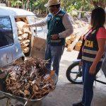 SERFOR decomisa palo santo de procedencia ilegal en Sullana